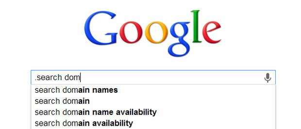 DNP ICANN blocks Google's dotless domain dreams