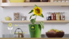 estimote-sticker-flower-pot