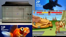fish-play-street-fighter