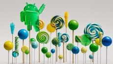 Lollipop-Forest-630x354