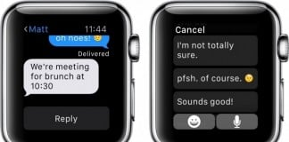 Apple-Watch-Default-Reply-how-to-800x4271