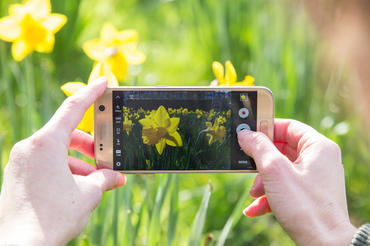 samsung-galaxy-s7-edge-out-about.jpg
