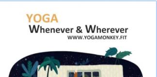 Yoga Monkey: Monkey see, monkey do yoga (Review)