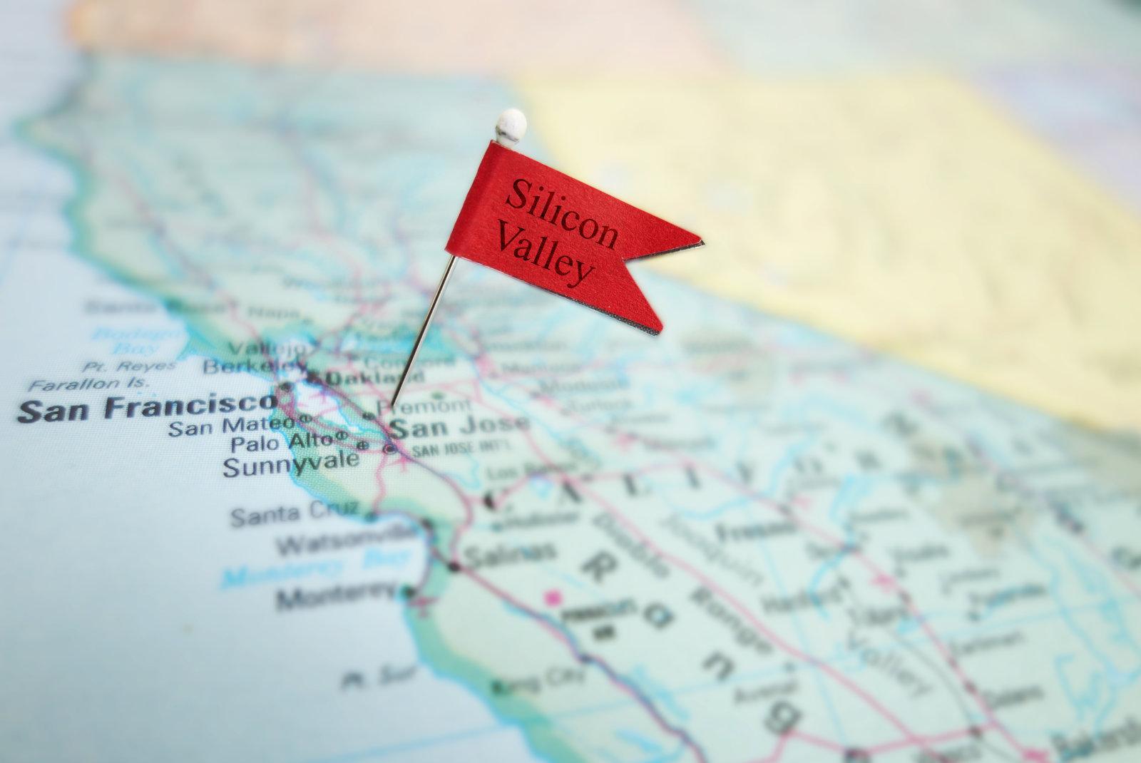 Silicon Valley pin flag