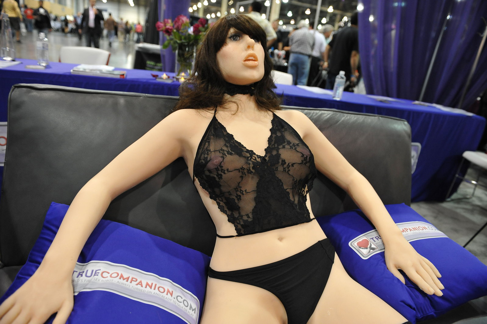 Robotic sex partners will be commonplace