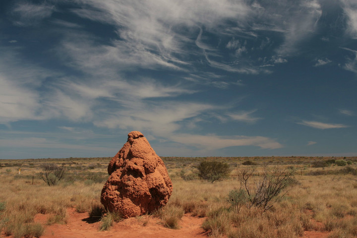 biomimicry examples termite mounds