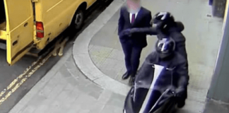 Next time you're in London, watch out for shameless scooter-riding phone thieves