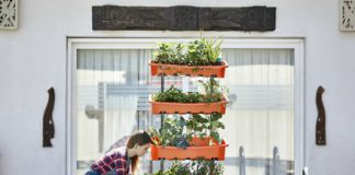 Wannabe urban gardeners, how about this indoor farm to get you started?