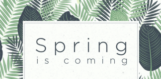 Spring is coming, and HTC is teasing a mysterious new product launch