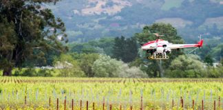 Automated agriculture: Can robots, drones, and AI save us from starvation?
