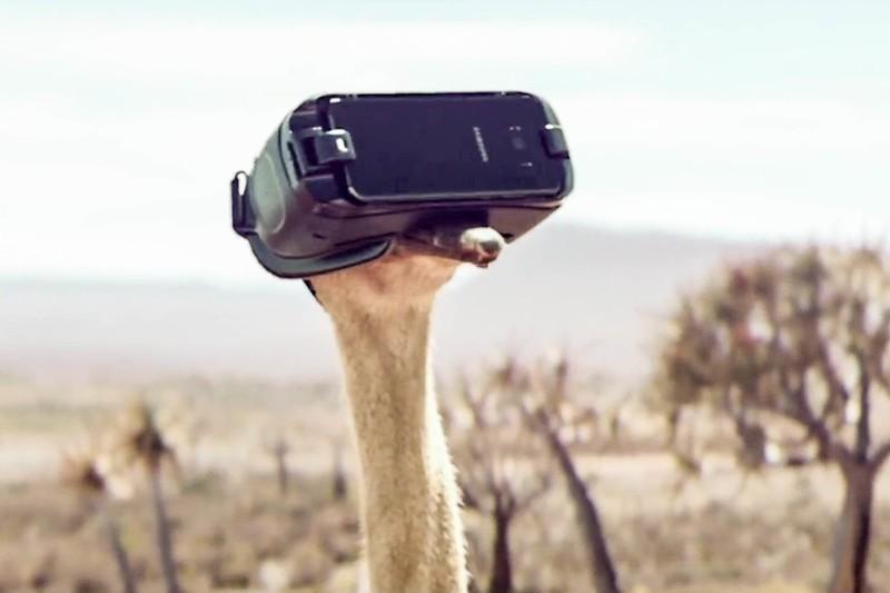 gear-vr-ostrich.jpg?itok=ZtyoKUg4