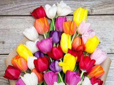 flowers-stacksocial.jpg?itok=U70Suuzs