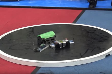 You wouldn't want to meet these robot sumo wrestlers in a dark alley