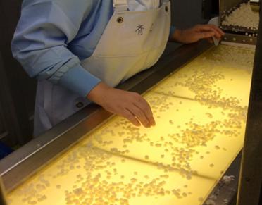 Kewpie's inspectors looking at diced potatoes