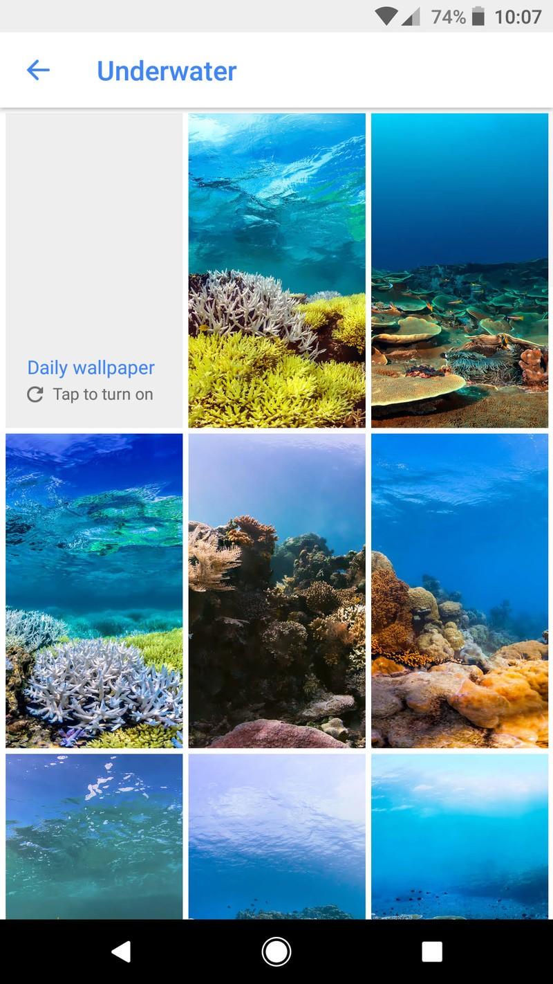 Google-Wallpapers-Underwater_0.jpg?itok=