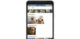 Google Photos can pick your pet out of a furry lineup