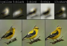 Microsoft's new bot can draw a photo-realistic bird based on text descriptions