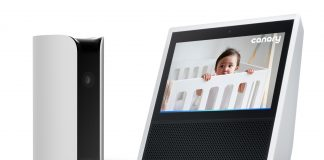 Watch your Canary camera feeds on Echo Spot, Echo Show and Fire TV