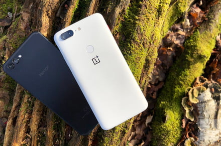 The $500 question: Can the Honor View 10 beat the OnePlus 5T in a camera shootout?