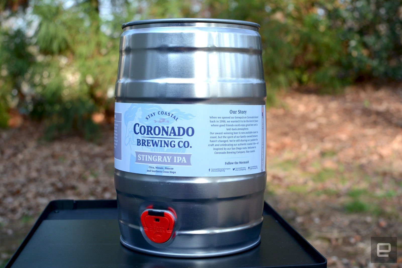 Pico C review: Making homebrew beer easy for beginners | AIVAnet