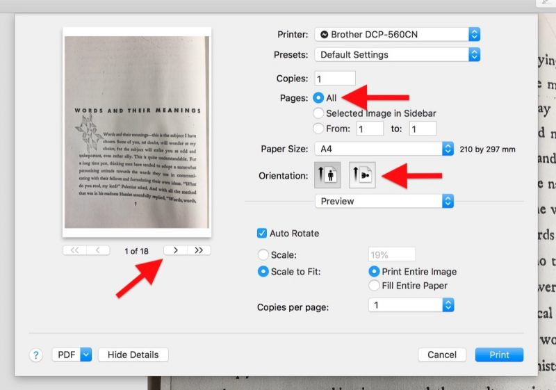 how to turn pdf into image in preview