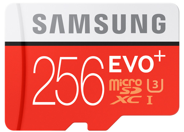 samsung-EVOplus-256gb-microsd.jpg?itok=e