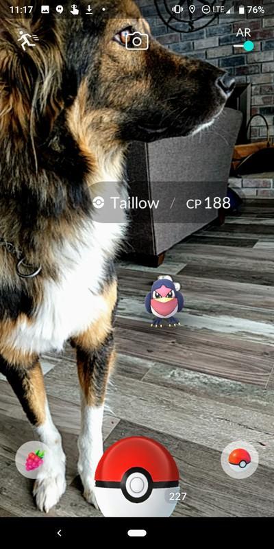 pokemon_ar.jpg?itok=RN3yaYCo