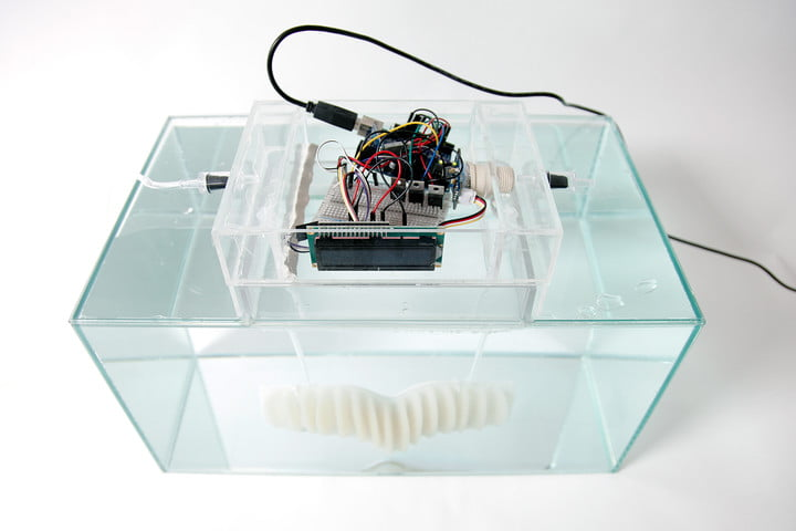 amphibio gills are designed to let humans breathe underwater working prototype 1