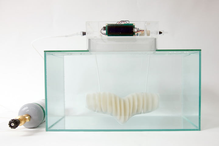 amphibio gills are designed to let humans breathe underwater working prototype 3