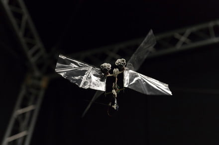 This amazingly acrobatic winged robot moves just like a fruit fly