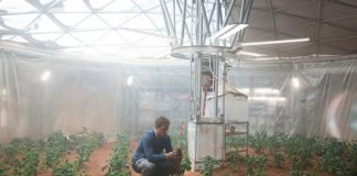 Biologists have found a protein that could make space farming possible