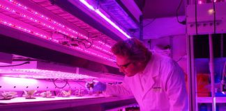 With Personal Food Computers, nerd farmers are finding the best way to grow