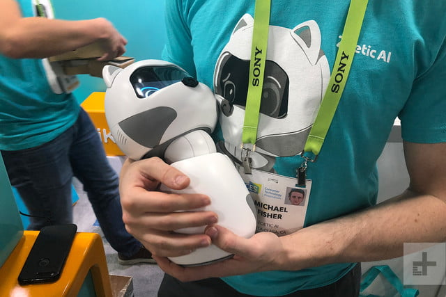 cutest companion robots ces 2019 zoetic kiki cradled