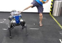 ANYmal dog robot can get back on its feet when someone pushes it over