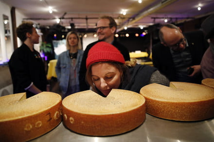 Cheese tastes different when it listens to Led Zeppelin, Swiss study finds