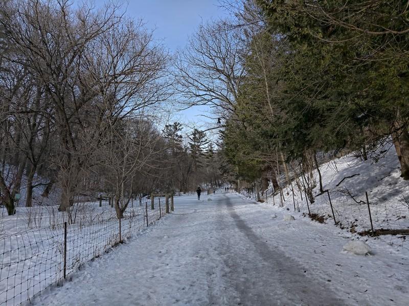 snow-walk-2.jpg?itok=WXp4O8If