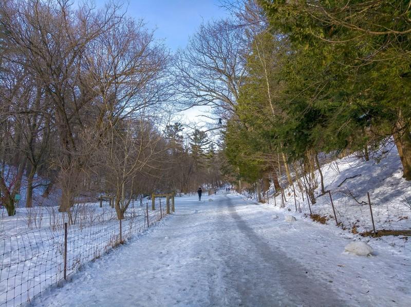 snow-walk-1.jpg?itok=WXp4O8If
