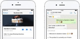 WhatsApp Business App Expands to iPhone