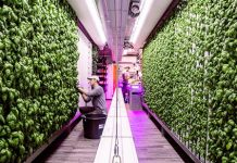 Digital Trends Live: Earth Day, indoor container farming, robot submarines