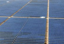 A giant new solar farm in Texas will harness the sun's rays to… brew beer?