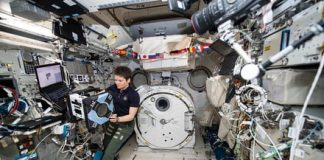 Hormone boosts could help astronauts from losing muscle on long space journeys