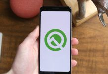 Are you using Android Q on your daily driver?