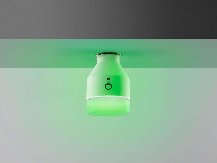 Do smart lights actually save you money?
