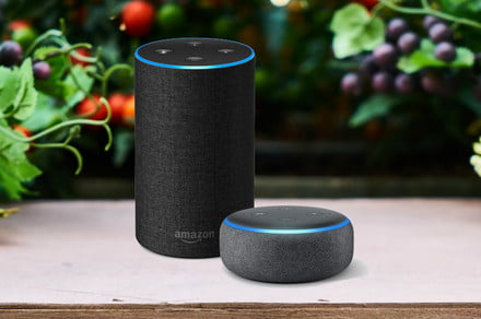 Prime Day 2019: AirPods, Echo devices, smartwatches, and iPad deals