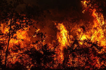 A.I. cameras could help stomp out wildfires before they become disastrous