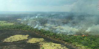 Apple Donating Money to Preserve Amazon Rainforests Following Devastating Fires