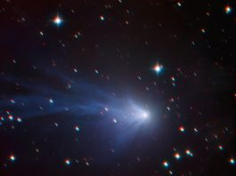 Image of rare blue comet captured by the European Southern Observatory