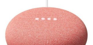 Battle of the small smart speakers: Nest Mini vs. Echo Dot