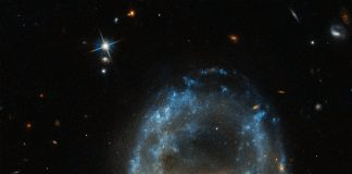 The universe dresses up for Halloween as Hubble captures skull-like galaxy