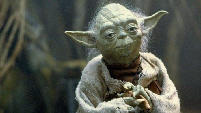 Yoda's species is shrouded in mystery